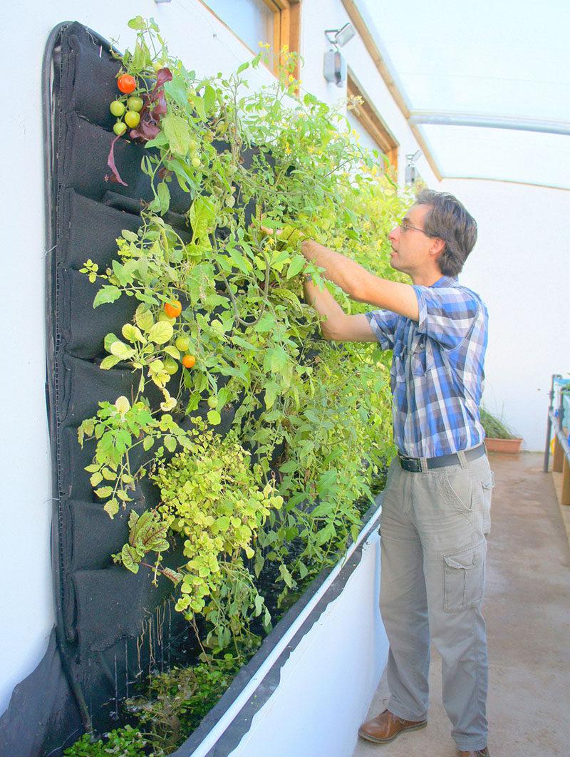 Fullsize Of Upright Garden Planters