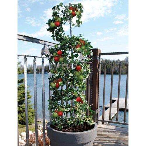 Medium Crop Of Vegetable Vertical Garden