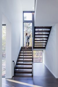 This New Contemporary House Surrounded By Trees Overlooks ...