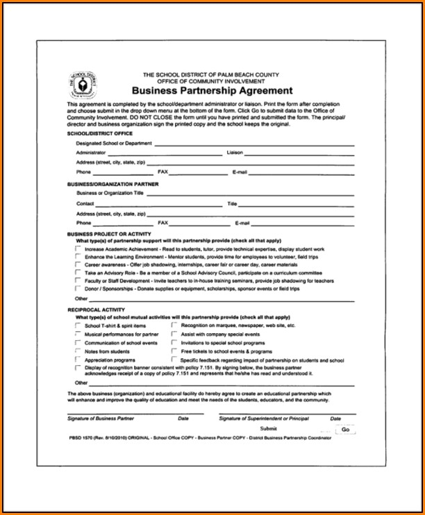 resume examples limited partnership