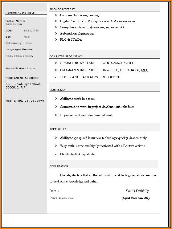 Resume Template Word Free Download - Resume  Resume Examples