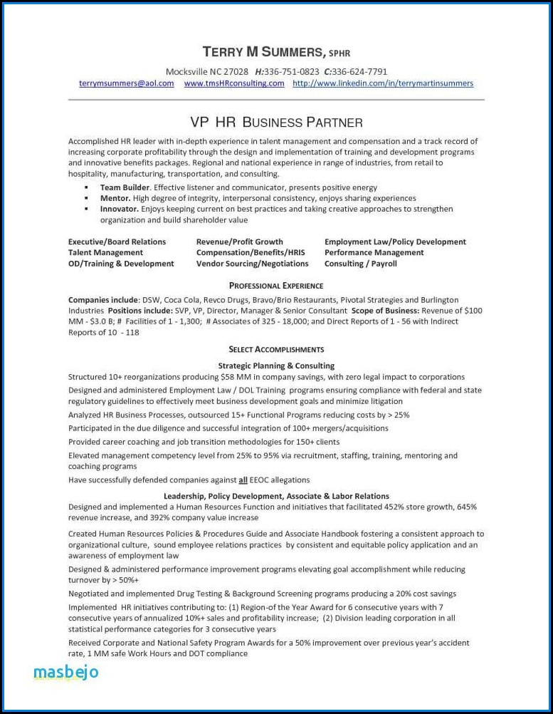 Executive Resume Writing Service Dallas - Resume  Resume Examples