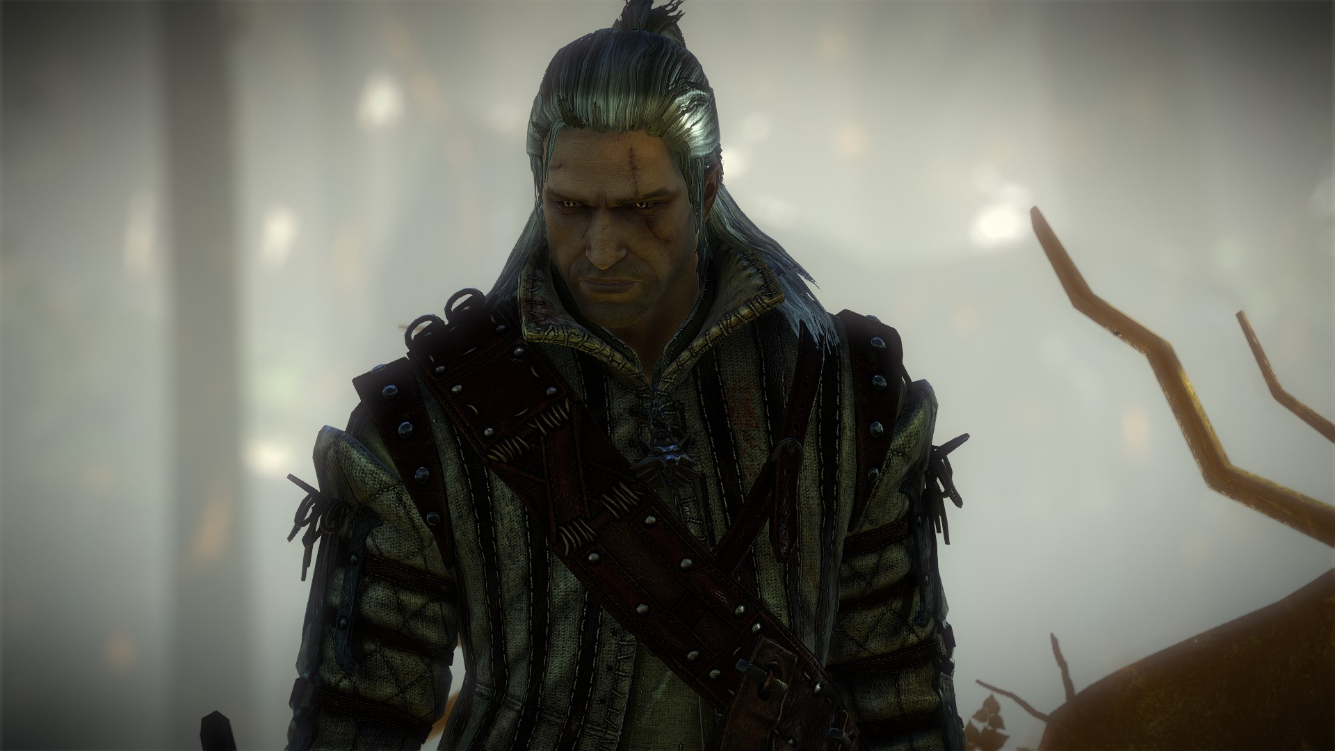 The Witcher 2: Assassin of Kings (Enhanced Edition) Review