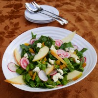 Rainbow Chard Salad with Apple and Radishes