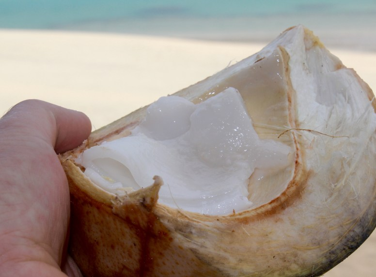 This young coconut flesh was silky smooth with the texture of a pannacotta.