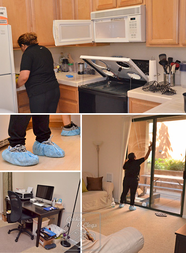 Exec Green House Cleaning Service-Good  Affordable CA, NY, WA, MA, IL