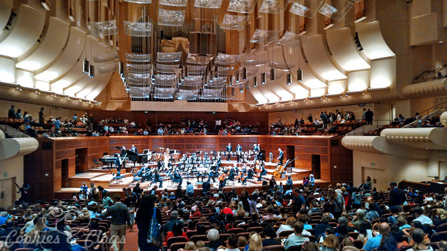 San Francisco Symphony Music For Families Review