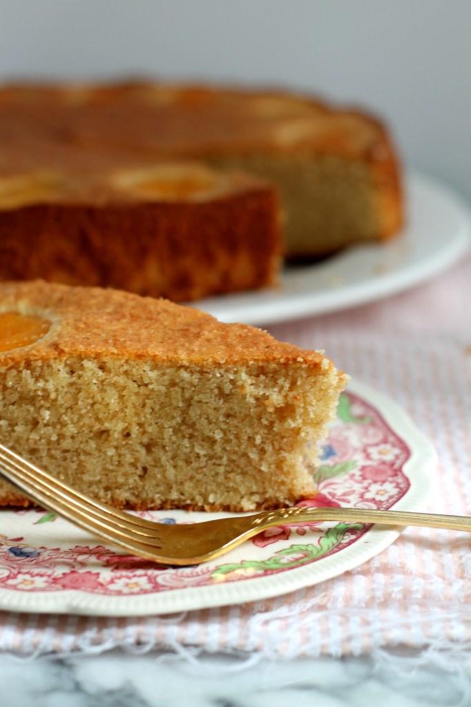 Almond Apricot Italian Cake 02