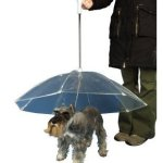 Umbrella Leash – Keeping your Doggies Dry