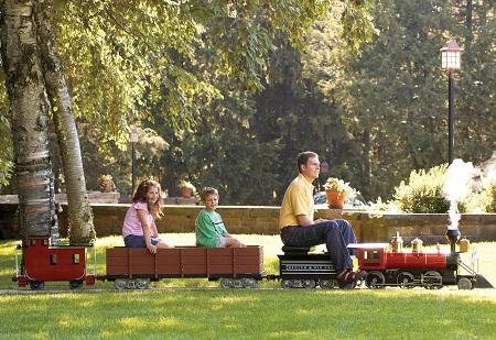 Amusement Park Railroad