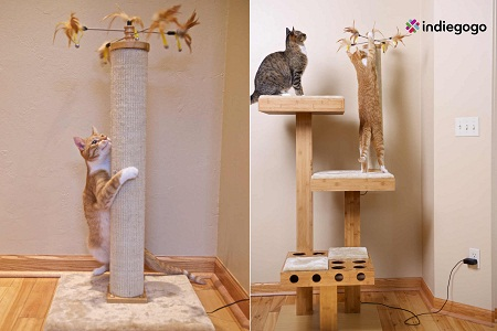 Cat Power Tower