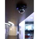 D-Link starts to ship its HD Indoor Mini Dome Camera