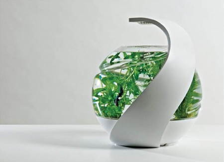 Avo self sustaining fish tank coolest gadgets for Self sustaining garden with fish
