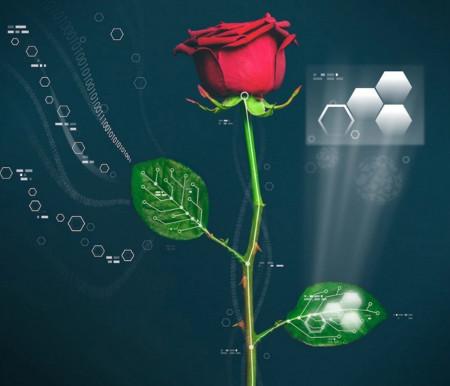 bionic-flower