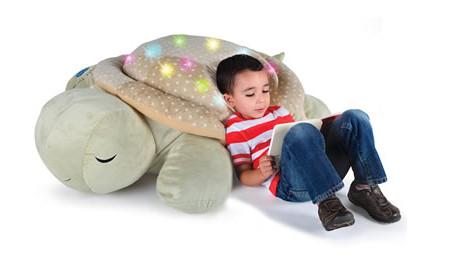 nap-inducing-tortoise