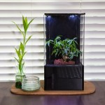 The EcoQube Air uses plant power to stop your life from becoming stagnant