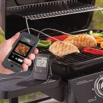 Smartphone Alerting Barbecue Thermometer tells you when your meal is ready