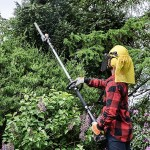 The VonHaus Hedge Trimmer cuts down the beauty of nature