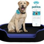 Petrics comes up with first smart pet bed in the world