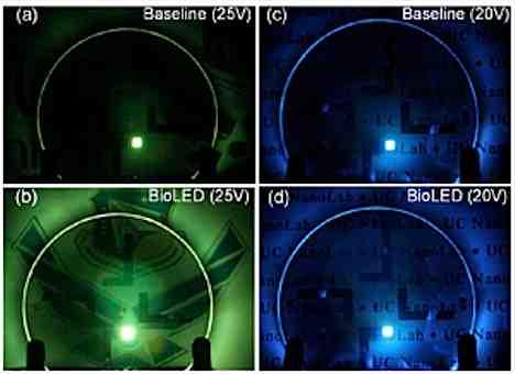LED vs Organic LED comparison picture