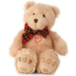 MP3 Teddy Bear appeals to all ages