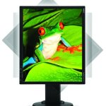 NEC offers MultiSync EA190M LCD monitor