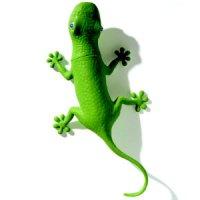 shower-wizard-lizard.jpg