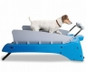 The Canine Treadmill for dog fanatics