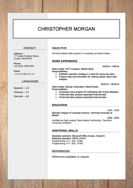 cv english example word document