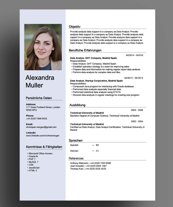 sample resume in german format