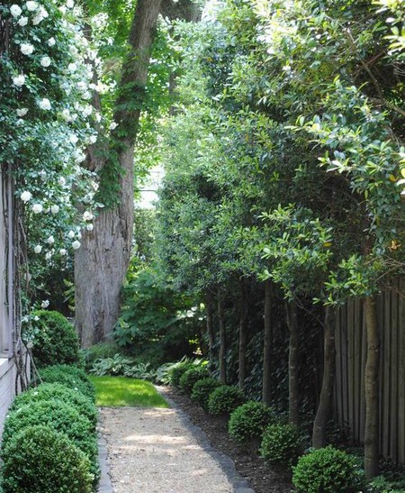 Special Considerations When Designing Your Garden wwwolgardenme - designing your garden