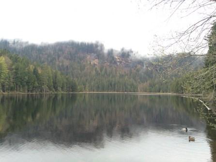 Großer Arbersee