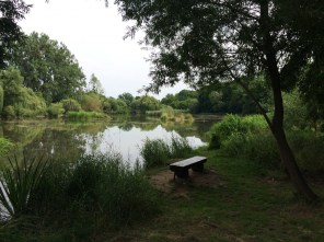 Ruheoase Stadtpark Torgau