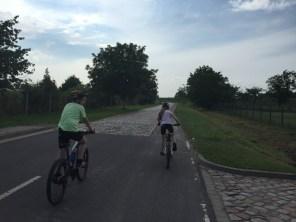 Letzter Abschnitt zwischen Groß-Rosenburg und Schwarz