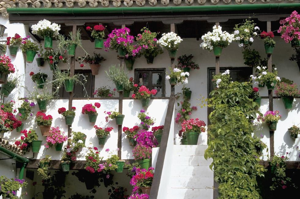 Patios Cordobeses. ©Turismo de Córdoba