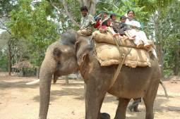 Cauvery-Nisargadhama