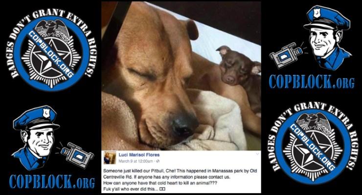 Virginia State Trooper Killed Dog