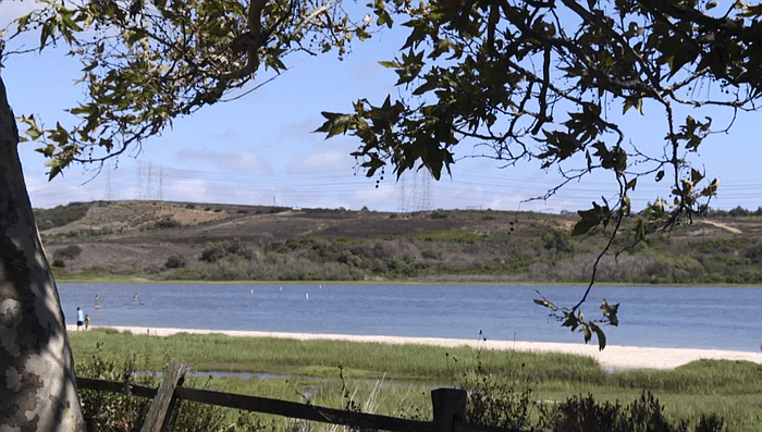Carlsbad Land Trust : A Progressive Vision for our Lagoon