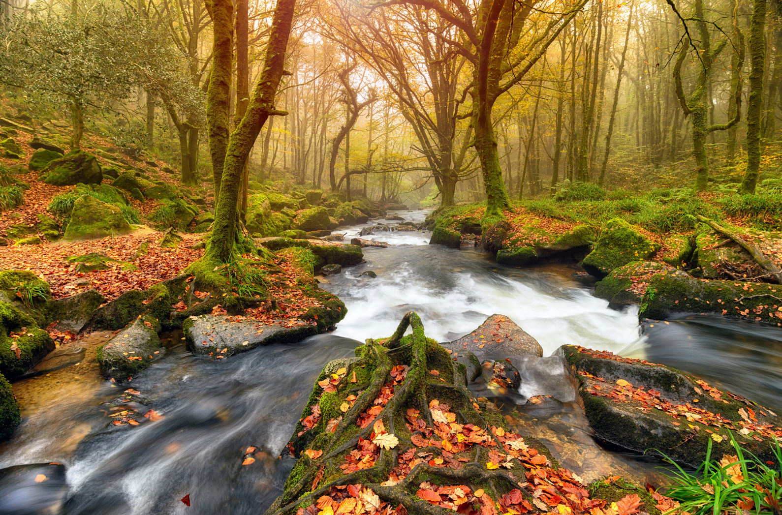 Free Fall Screensavers Wallpaper The Best Things To Do In Cornwall In The Autumn Cornwall