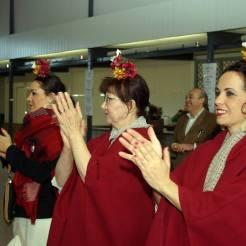 coro-rociero-la-borriquita-certamen-villancicos-azuaga-badajoz-2015-14