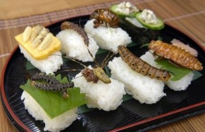 insect_sushi_01-500x322
