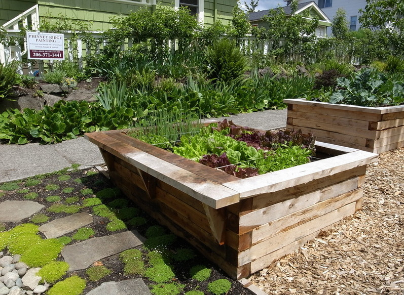Backyard Garden Box Design Garden ideas and garden design