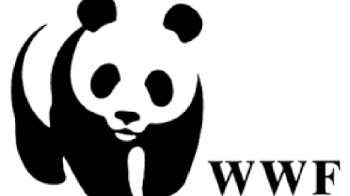 wwf panda wwf