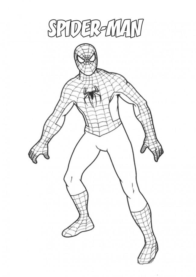 Spider man da colorare for Disegni da colorare di spaiderman