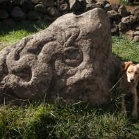 Pétroglyphe représentant l'homme oiseau, au bord du Rano Kau