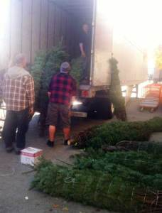 Costco Christmas Tree Truck