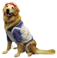 Raggedy Ann Dog Costume - CostumePub.com