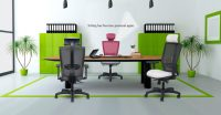 Office Chairs for Lower Back Pain Relief - (Reviews ...