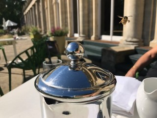 cowley-manor-kids-summer-cotswolds-concierge (19)