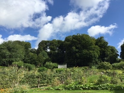 painswick-rococo-garden-summer-cotswolds-concierge (41)